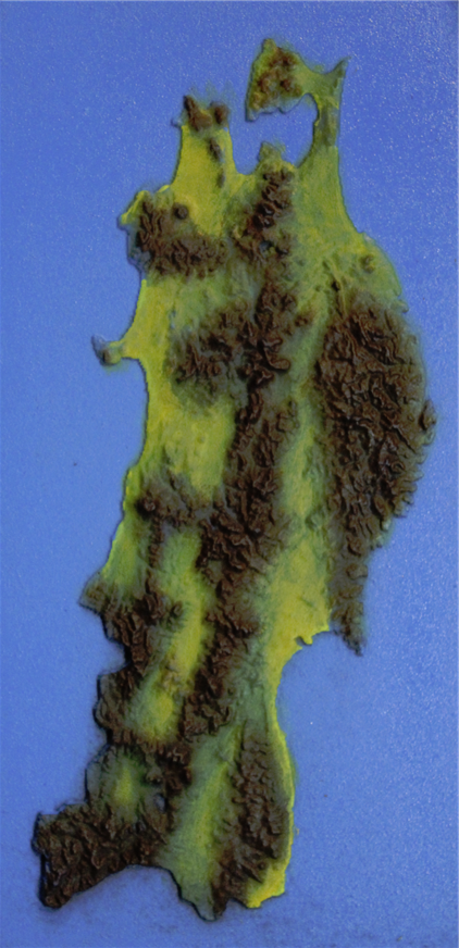 MDFのCNC彫刻